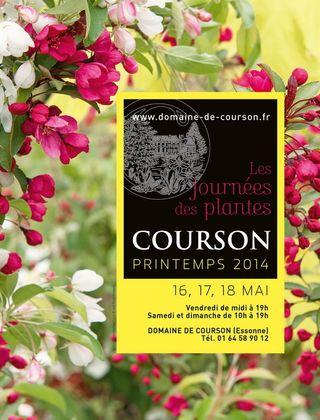 Affiche Courson P2014 HD.tiff
