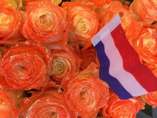 CDM hollande_10