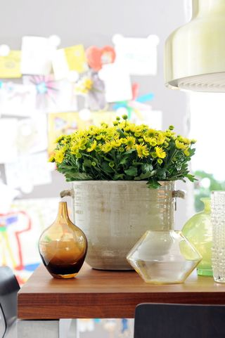 Chrysantheme_OHF_03