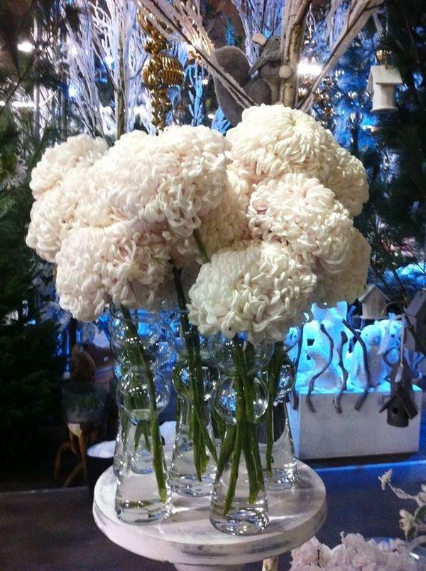 avez vous d j mis des chrysanth mes boules en fleurs coup es chez vous le pouvoir des fleurs. Black Bedroom Furniture Sets. Home Design Ideas