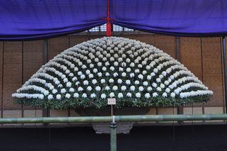 Chrysantheme Ozukuri _04