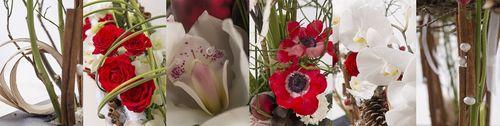 Interflora-tendance florale décembre M. Rault_04