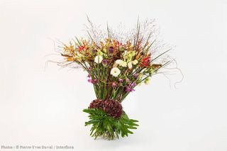 Bouquet éliminatoires coupe du monde interflora J Tonnelier
