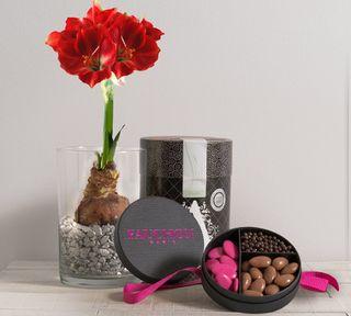 Interflora amaryllis et chocolat