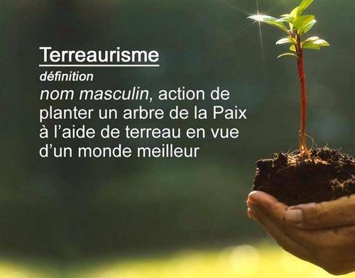 Terreaurisme