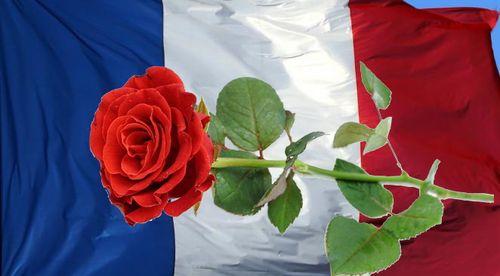 Drapeau avec rose rouge