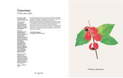 Pages_interieurs_les_plantes_qui_soignent 1