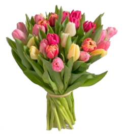 Interflora bouquet tulipes