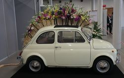 Coupe europa fiat 500