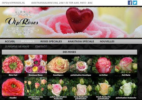 Vip roses site
