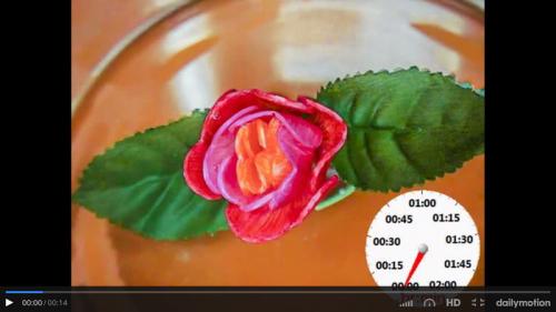 Fleur 1