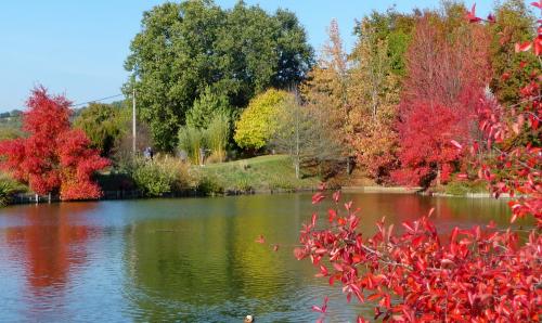 Jardin du bois marquis 1
