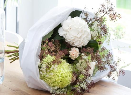 Les hortensias ou hydrang as le pouvoir des fleurs - Faut il couper les fleurs fanees des hortensias ...