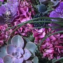 Floralies_03