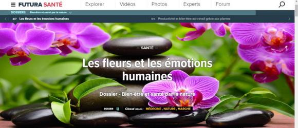Futura-santé-fleurs
