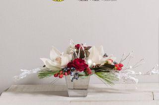 Les compositions florales propos es par interflora pour for Amaryllis pour noel