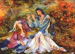 Tulipe prince farhad et Shirin
