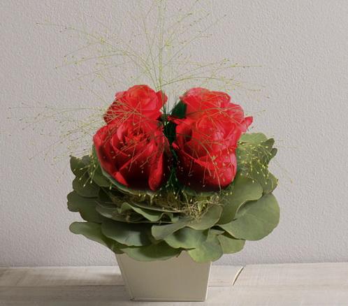 Interflora St valentin Poudré rouge