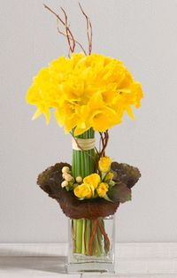 Jonquilles interflora