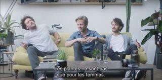 Vitamin plantes-hommes