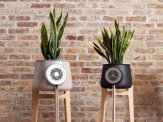 Clairy-purificateur-dair-plante-design-kickstarter-01