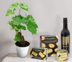 Interflora vigne fauchon