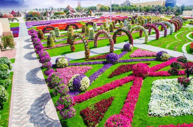 Jardin miracle Dubaï 04
