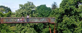 Jardin Kew