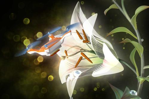 Robot pollinisateur