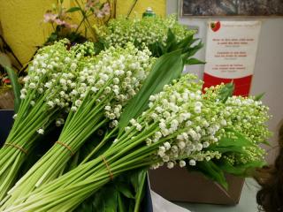 Muguets bouquets