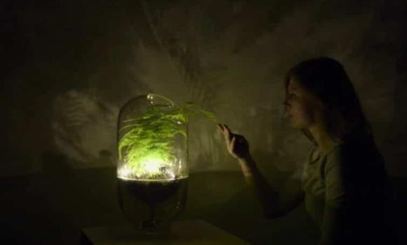 Livinglight.info_activation-de-la-lampe