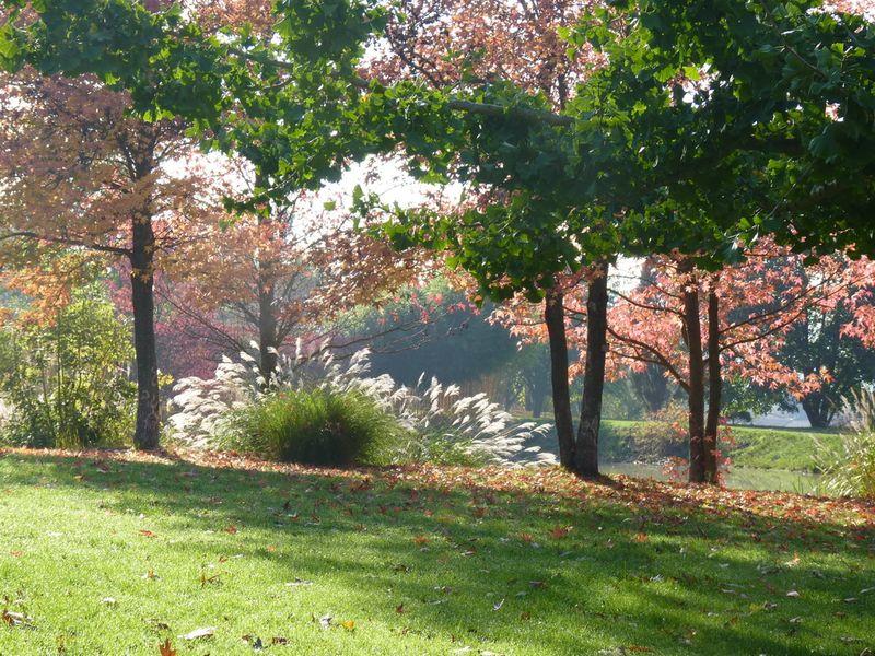 Jardin du bois marquis C peyron -04
