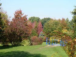Jardin du bois marquis C peyron -03