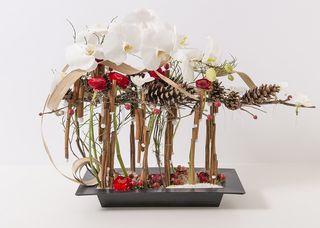 Interflora-tendance florale décembre M. Rault_03