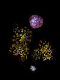 Flowerwork_03