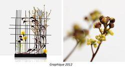 Haute couture florale graphique 2012