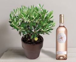 Interflora olivier et rosé
