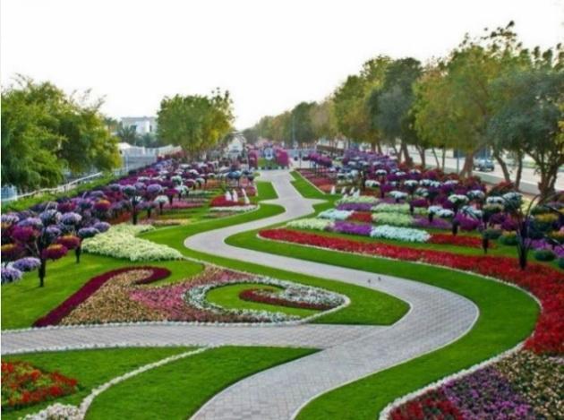 Jardin miracle Dubaï 02