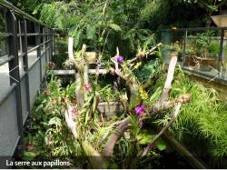 Jardin Angers 2