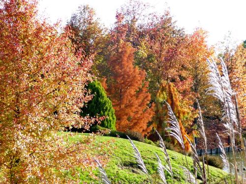 Jardin du bois marquis 2