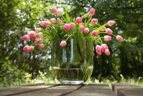 Tulipes vase