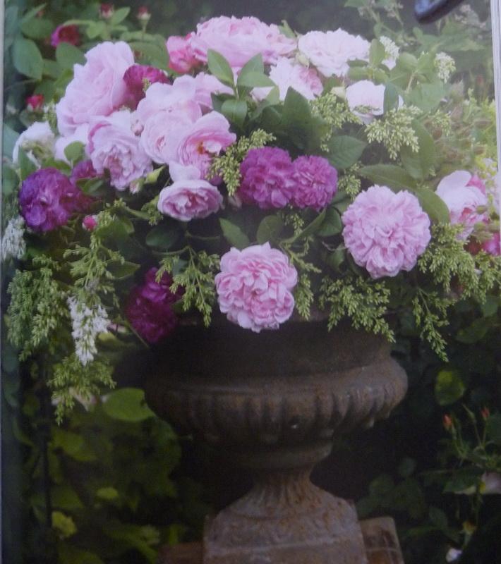 Bouquets Isabelle_09