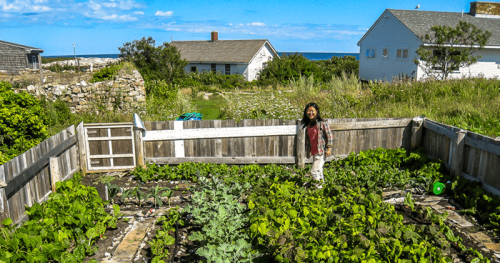 Jardinage et terre_02
