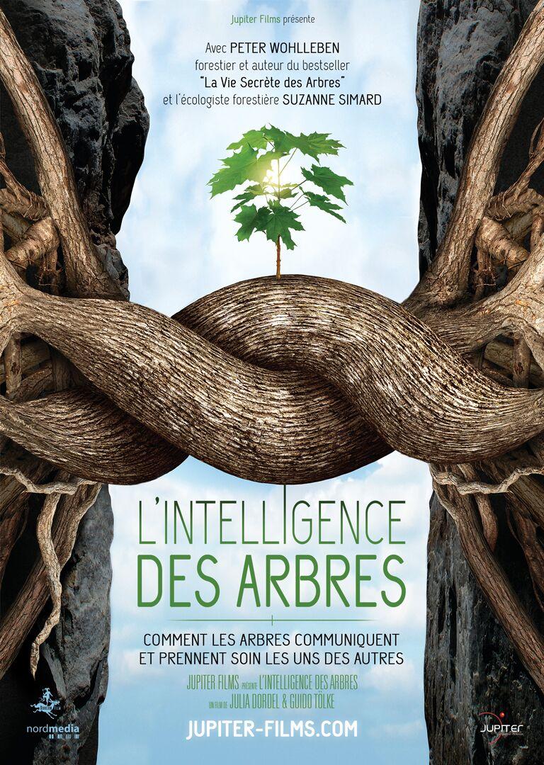 L'intelligence des plantes affiche