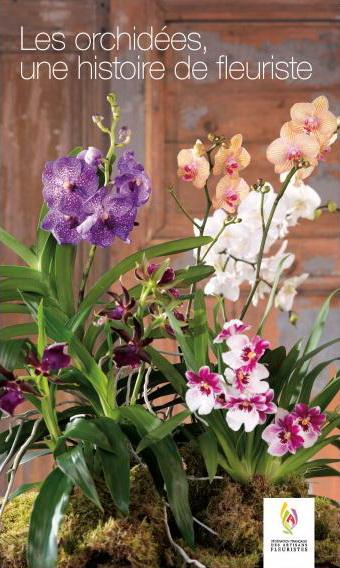 FFAF 4 orchidees B