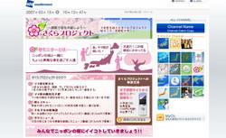 Cerisiers_japon_mars