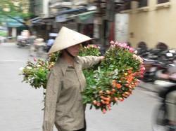 Fleuriste_vietnam_01