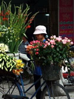 Fleuriste_vietnam_02