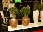 Salon_hortifair_hollande_04