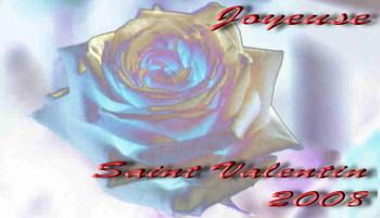 Rose_saint_valentin_2008